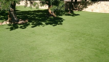 How to clean the artificial grass without damaging it: practical tips