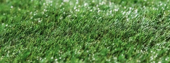 How to care for artificial grass?: Tips to keep in mind