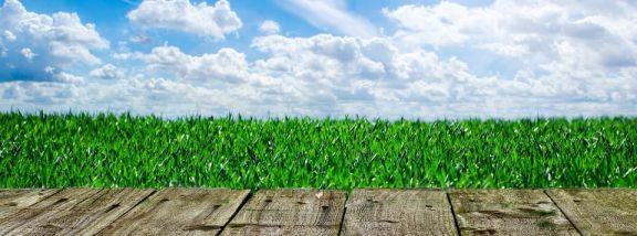 How to put an artificial grass on a natural ground in 8 steps