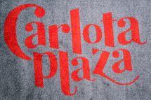 felpudo-textil-lavable-carlota-plaza.jpg