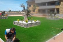 jardin9.jpg