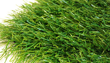 SIX NATIONS artificial grass