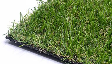 FIRST artificial grass