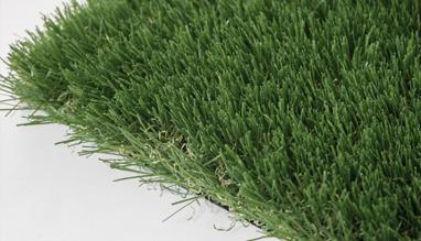 ARIMA artificial grass