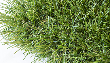 EXCELLENCE artificial grass