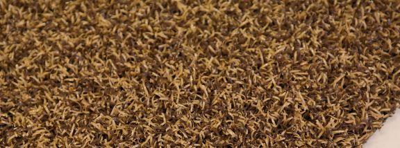 TRAFFIC outdoor carpet