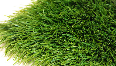 WEMBLEY artificial grass